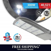 Seamless Design LED Pole Light SILVER finish 300watt.